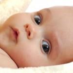 Bebek Gelişimi 6. Ay 4. Hafta