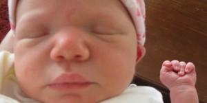 Bebek Gelişimi 1. Hafta