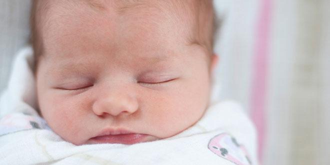 Bebek Gelişimi 2. Hafta