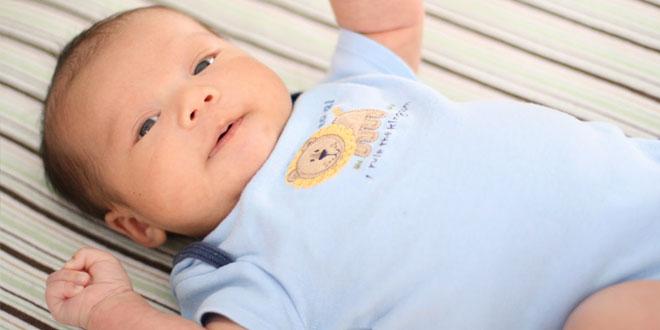 Bebek Gelişimi 11. Ay 2. Hafta