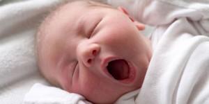Bebek Gelişimi – Yenidoğan